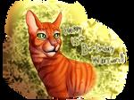 Happy 15th Birthday, Warriors!!! by Jayie-The-Hufflepuff
