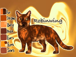 Robinwing of ThunderClan - Bluestar's Prophecy by Jayie-The-Hufflepuff