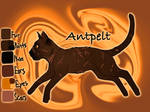 Antpelt of WindClan - Sign of the Moon