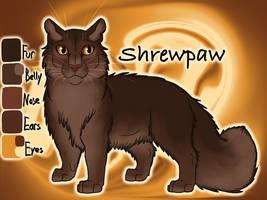 Shrewpaw of ThunderClan - Dawn by Jayie-The-Hufflepuff
