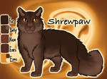 Shrewpaw of ThunderClan - Dawn