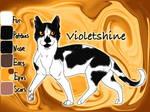 Violetshine of SkyClan - Lost Stars