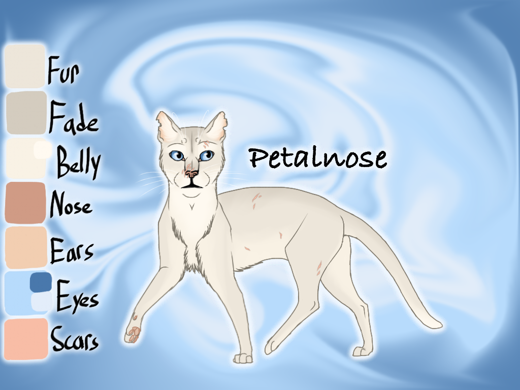 Petalnose of SkyClan - Sasha's Calling by Jayie-The-Hufflepuff