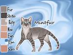 Mintfur of SkyClan - Sasha's Calling
