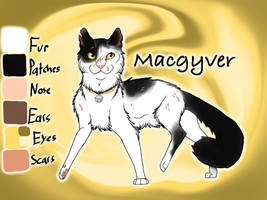 Macgyver of SkyClan - Sasha's Calling by Jayie-The-Hufflepuff
