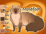 Molefoot of ThunderClan - Silent Sacrifice
