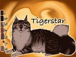 Tigerstar of ShadowClan - The Darkest Hour