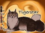 Tigerstar of ShadowClan - Silent Sacrifice