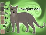 Twigbranch of ThunderClan - The Raging Storm