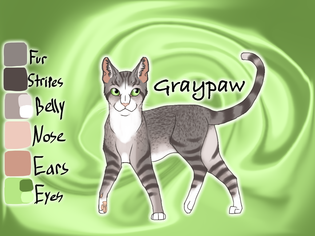 Graypaw of SkyClan - Sasha's Calling by Jayie-The-Hufflepuff