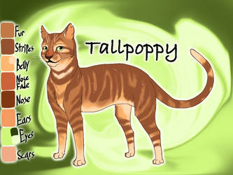 Tallpoppy of ShadowClan - Molefoot's Loss by Jayie-The-Hufflepuff
