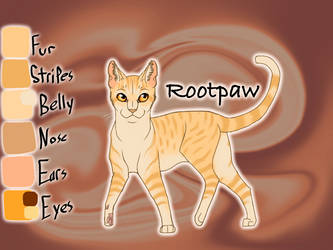 Old Rootpaw image by Jayie-The-Hufflepuff