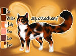 Spottedleaf of ThunderClan - Into the Wild