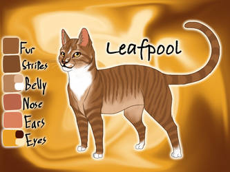 Leafpool of ThunderClan - Silent Sacrifice by Jayie-The-Hufflepuff