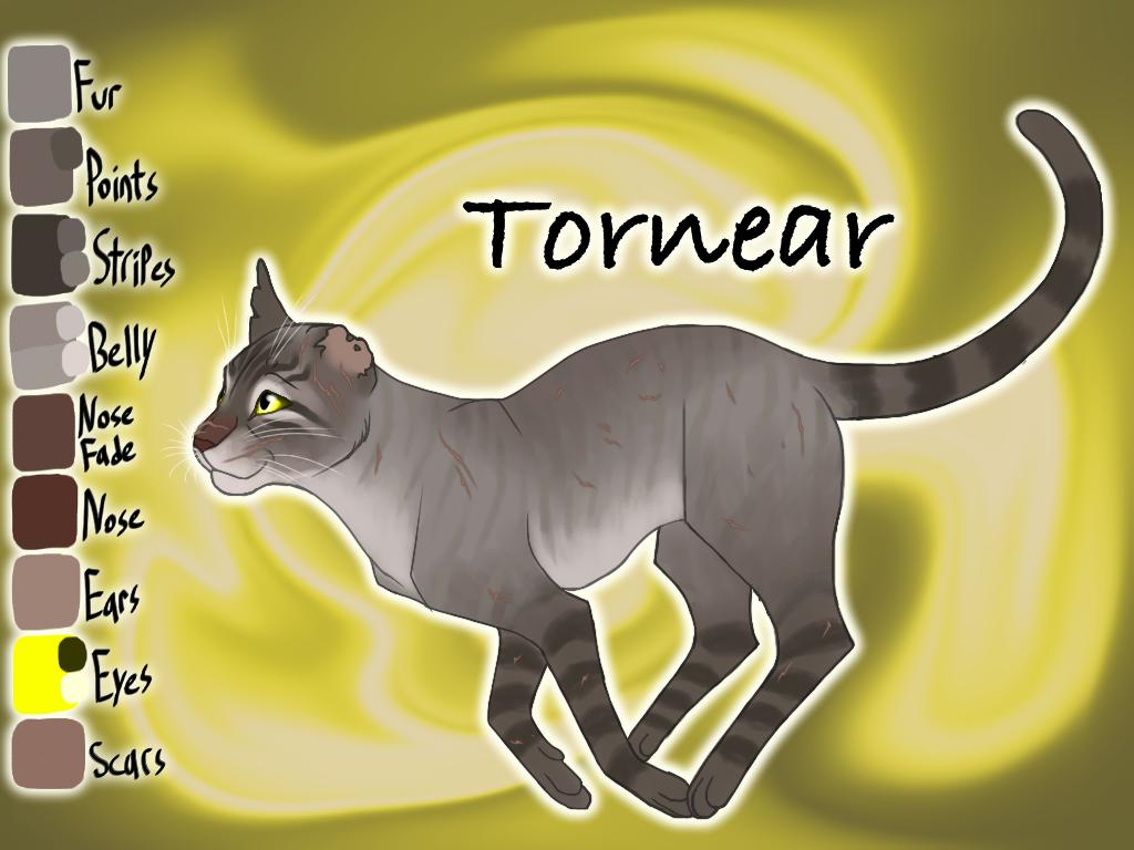 Tornear of WindClan - Shrewfoot's Spite by Jayie-The-Hufflepuff