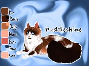 Puddleshine of ShadowClan - Lost Stars