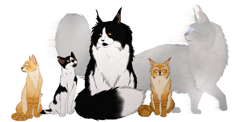 Strength of a Sister - Squirrelflight's Hope Spoil