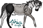 Pawing by shiasgraphics