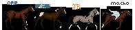 Sabriel's Mini Herd by shiasgraphics