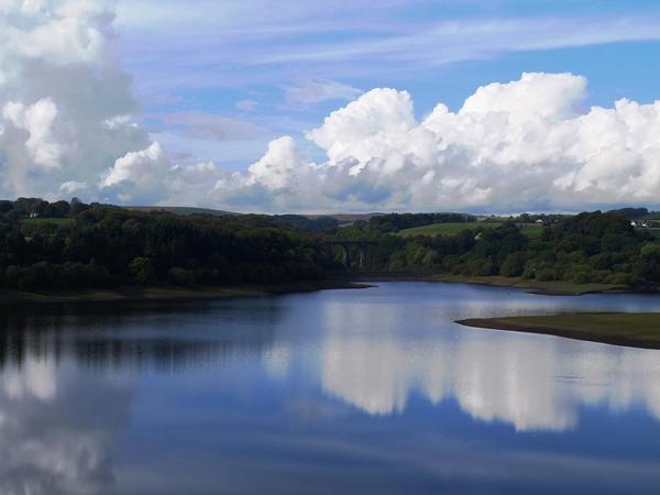 Wayoh Reservoir by geanera
