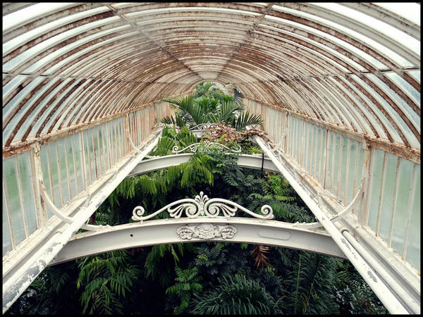 Palm House Rooftop by geanera