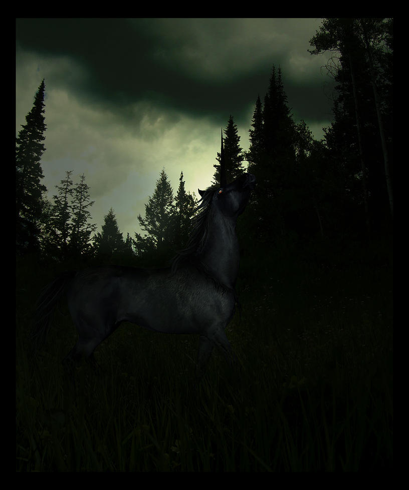 are you afraid of the dark? by AquiloniusLupus on DeviantArt