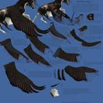 Wings: Bandit