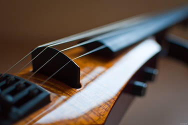 Electric Violin by 4d0