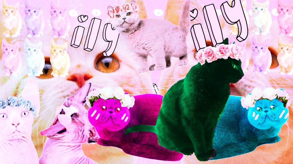 Cat desktop! (free to use) by Zelda-muffins