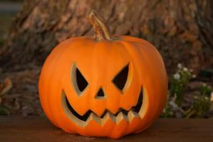 Pumpkin stock by TheKaykat-Stock