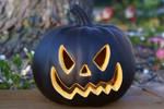 Black Pumpkin stock