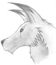 Wolf by xBleeding-Irisx