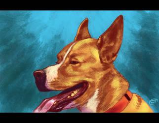 Dog Portrait Blue