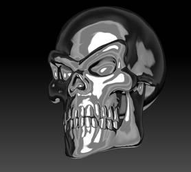 Silver Skull Render 03 by sav8197