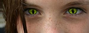 Reptil Eyes