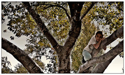 Girl In The Trees