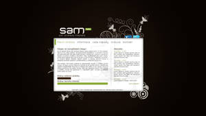 SAM Developer blog - v.1 beta