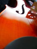 Solo Violin by industrial-evolution