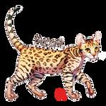 Cat Serie : Bengal