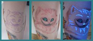 Cheshire Cat : WIP