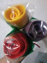 three colorful roses