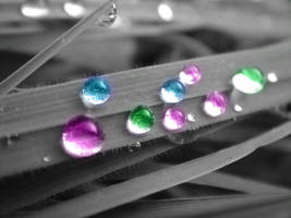 water drops 1 by eggsmakemesmile