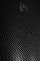 BlackWhite - 14 by RanMoneta