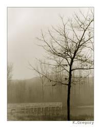 4x5 - Landscape II by librakat