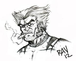 Wolverine by Crazy-Mutha
