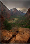 a Storm in Zion
