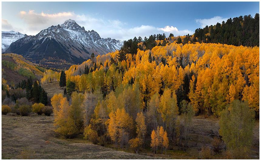 Peak of Fall