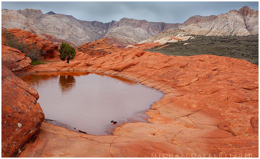 Desert Oasis by michael-dalberti on DeviantArt