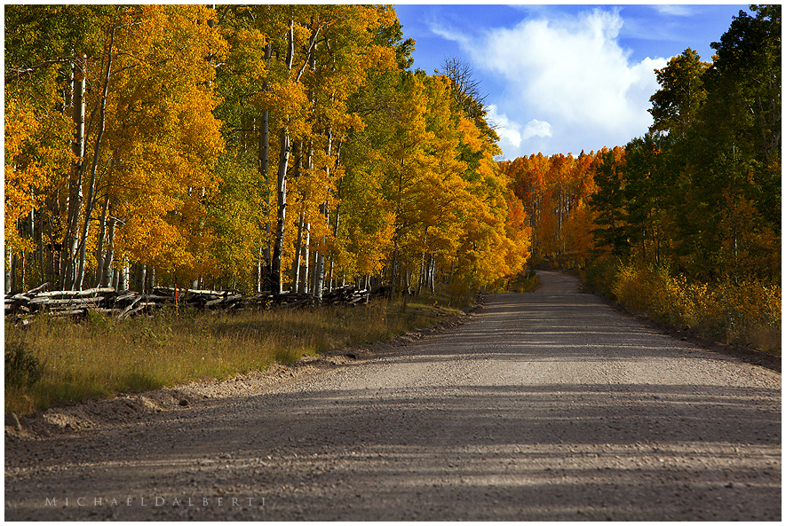 Autumn Road by michael-dalberti