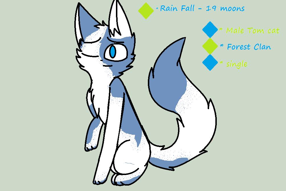 RainFall App by SoulCat2003
